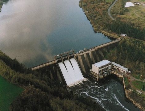 Experts in hydropower ecology.