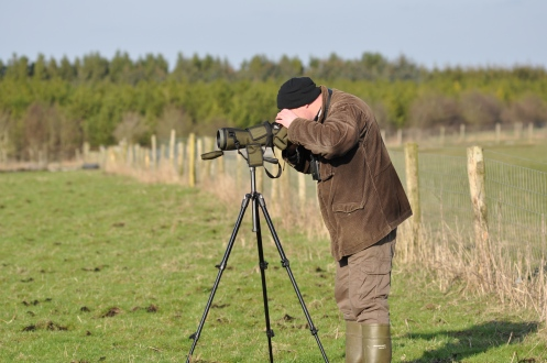 Wintering Bird Surveys (13)