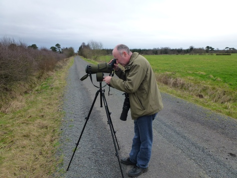 Wintering Bird Surveys (33)