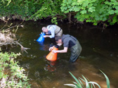 Water quality survey