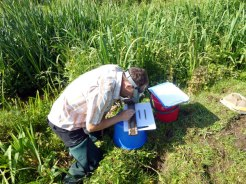 Aquatic Ecology Survey