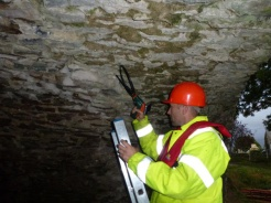Bat Survey Ireland (12)