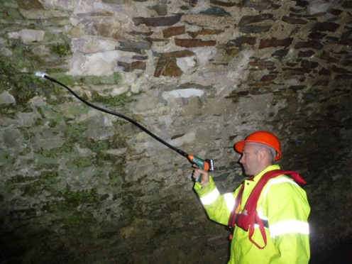 Irish Bat Surveys