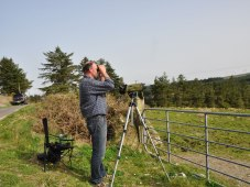 Breeding bird surveys 2014