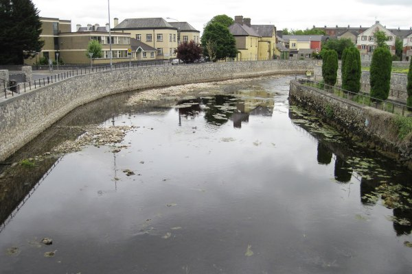 River Fergus, Ennis, Co Clare. This river is a designated SAC but was devastated both physically and ecologically by recent flood schemes which involved constructing new river walls though the town. This is the only section of the river where migratory lampreys occur, and all their nursery habitats were removed from this area of the river despite a commitment to undertake no instream works.