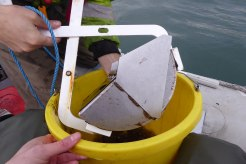 Marine ecology survey (11)